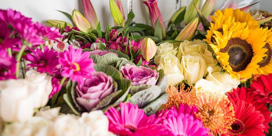 fleurs selon les saisons