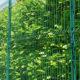 Comment clôturer votre jardin et aménager votre futur extérieur